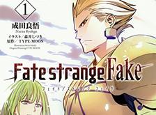 Fate/strange Fake (小説)